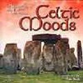 CD CELTIC MOODS(CD-Rです。)