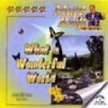 CD WHAT A WONDERFUL WORLD (CD-R)