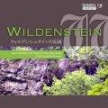 CD ウィルデンシュタインの伝説 <「ドイツ吹奏楽の現在」> 【2013年11月15日発売】